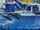Sea World Orlando_2
