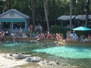 Sea World Orlando_5